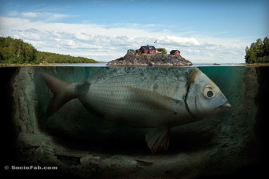 A house on a Fish Fin