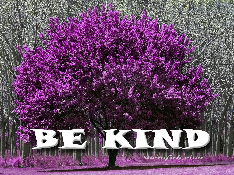 cover photo Be Kind