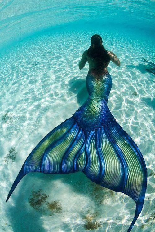 SocioFab Mermaid