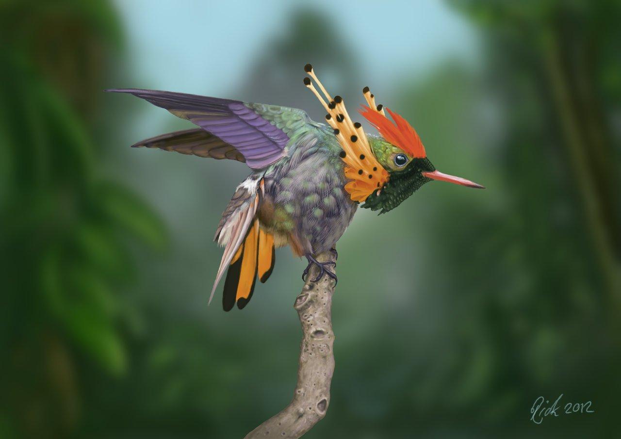 Hum hum Hummingbird from Google