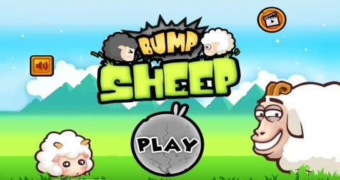 bump sheep review
